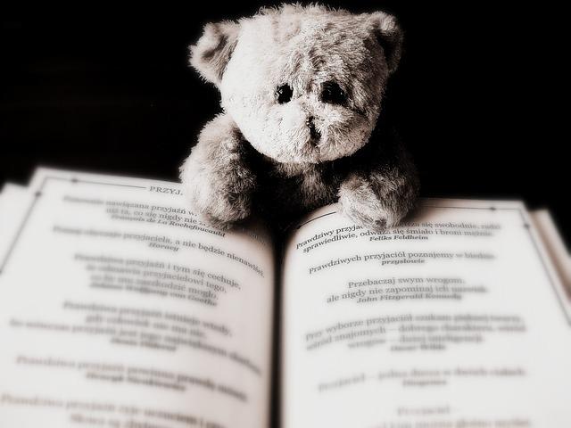 medvídek čtenář