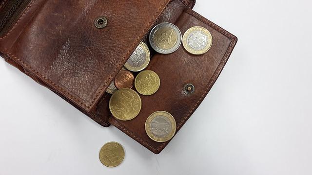 mince v peněžence.jpg
