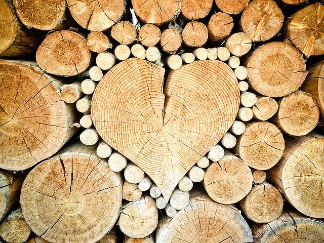 Materiál dřevo.jpg