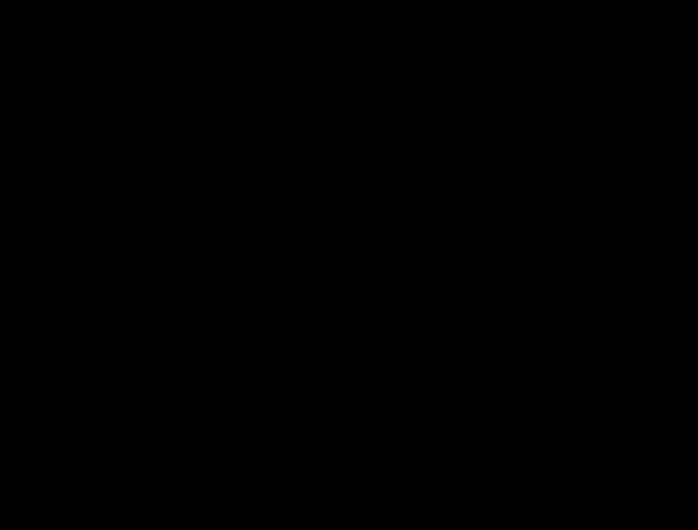 siluety několika skákajících postav