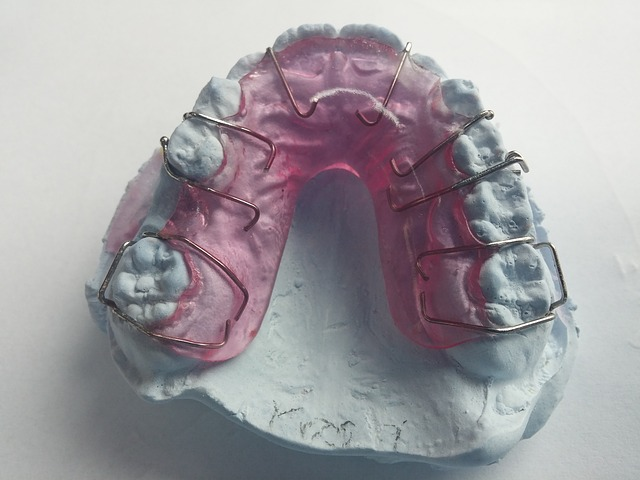otisky zubů